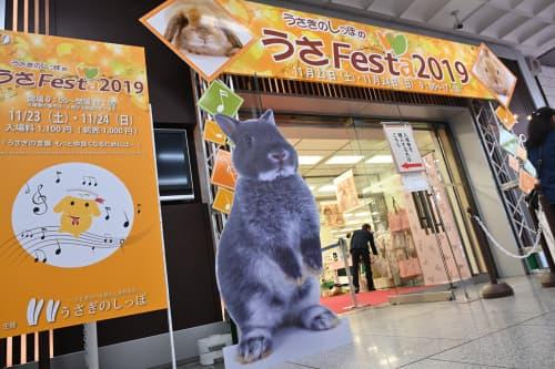 うさフェスタ 2020 秋は 11 月 21 日、22 日に横浜貿易ホールで開催!
