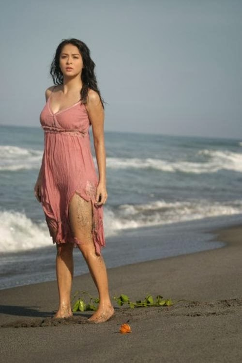 Marian Rivera Bikini 19