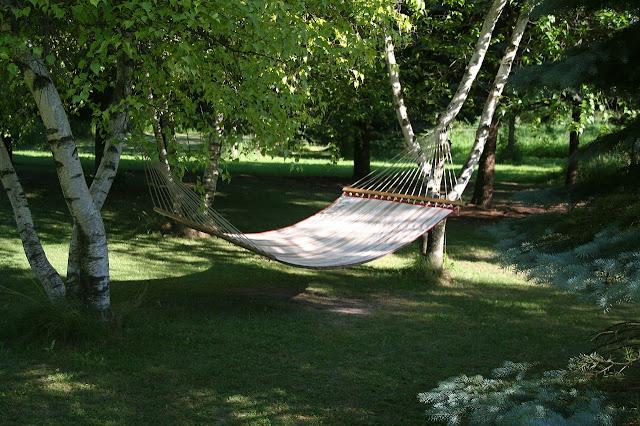 Bäume als Schattenspender: Pluspunkt Hängemattenbefestigung