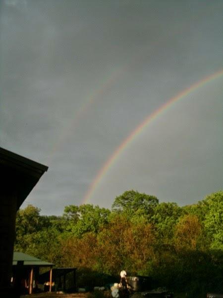 Trinity Acres Rainbow