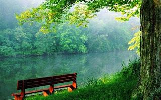 Resultado de imagem para paisagem de calma