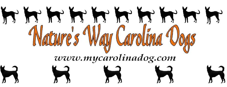 Nature\u0027s Way Carolina Dogs Puppy Sales Contract