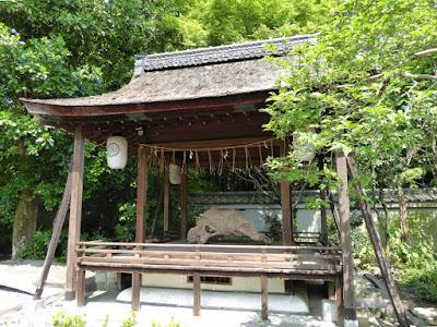 京都御苑・宗像神社 古い木