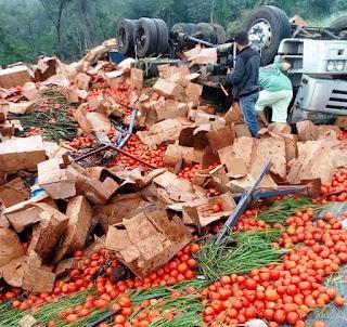 Caminhão carregado com tomates