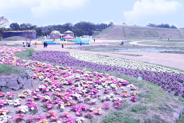 16 Must-See Flower Gardens Around Japan