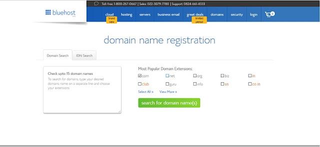 Bluehost Domain Name Registration