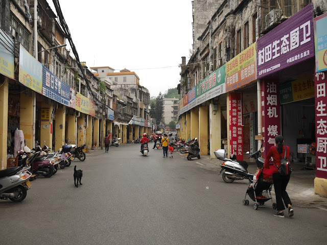 dog and a woman pushing a baby stroller on Jiefang West Road in Yunfu