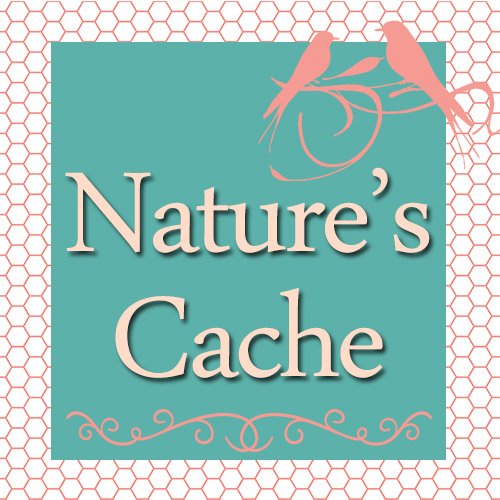Nature's Cache Store on Etsy