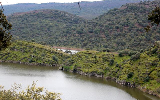 Ríos Tajo y Tiétar desde el mirador del Serrano. Monfragüe.Cáceres