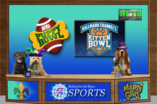 BFTB NETWoof Sports desk with three dogs in Mardi Gras costumes with Puppy Bowl and Kitten Bowl logos on back screen