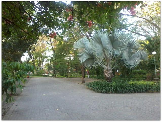 Taman Flora Surabaya