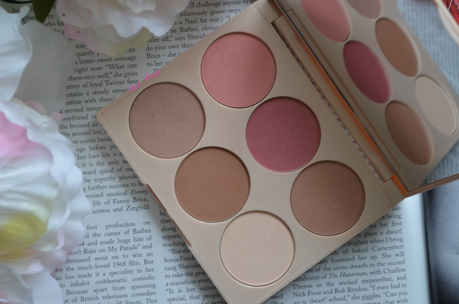 a9d79273 Review: Doll 10 Cheek to Chic Blush & Contour Palette   Pink Frenzy ...