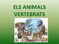 http://clic.xtec.cat/db/jclicApplet.jsp?project=http://clic.xtec.cat/projects/avertebr/jclic/avertebr.jclic.zip&lang=ca&title=Animals+vertebrats