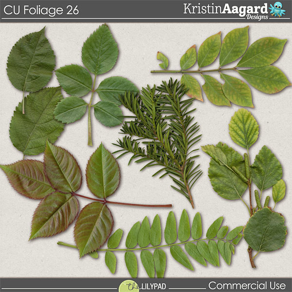 http://the-lilypad.com/store/digital-scrapbooking-cu-foliage-26.html