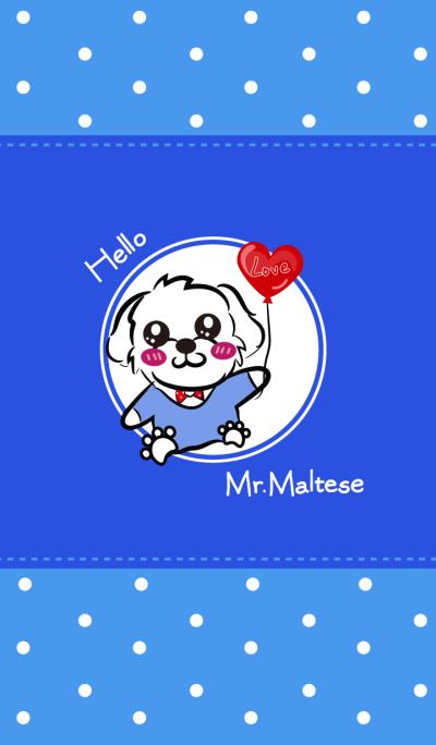 Hello!Mr.Maltese