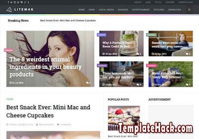 litemag blogger template