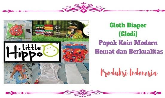Cloth Diaper (Clodi) Popok Kain Modern Hemat dan Berkualitas