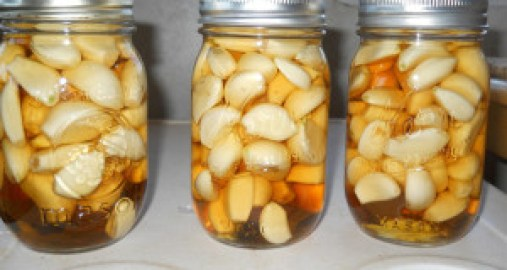 garlic, honey and apple vinegar to cure disease