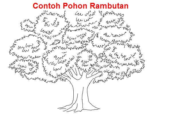 Contoh Psikotes Gambar Pohon Yang Baik Dan Benar Penjelasan