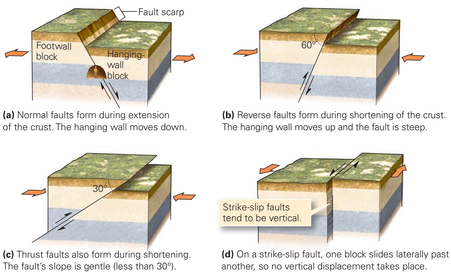 types of faults Types of fold anticline this anticline is in alberta, canadia in the rocky mountains  it is form by vertical movement and generally found fault below monocline a .