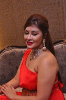 Payal Ghosh Looks Stunning in Red Half Shoulder Gown 002.JPG