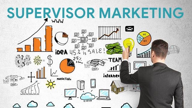 Pengertian Supervisor Marketing Tugas dan Tanggung Jawabnya
