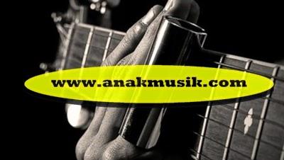 Slide Aksesoris Gitar