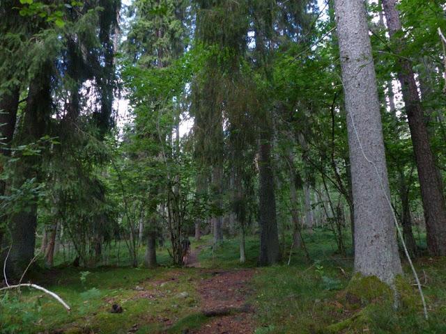 Urlaub Camping mit Hund Schweden Nationalpark Garphyttans wandern