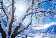 Kışın Sıcak Tutan Nevresim