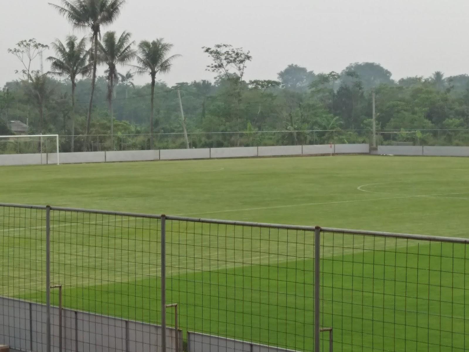 Jual Bibit Rumput Lapangan Sepak Bola Internasional Agen Biji Tanaman Hias Cara Penanaman