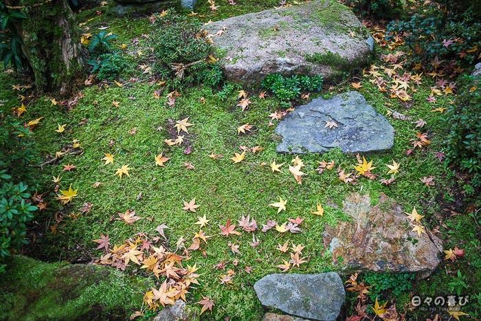 tapis mousse et feuilles de momiji
