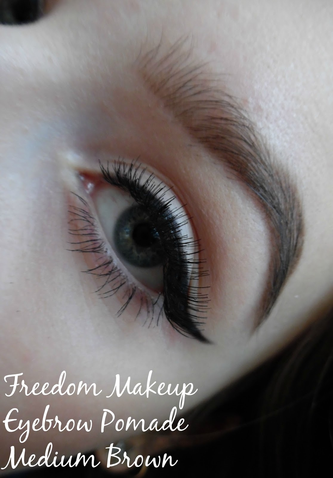 Freedommakeup Eyebrow Pomade In Soft Brown