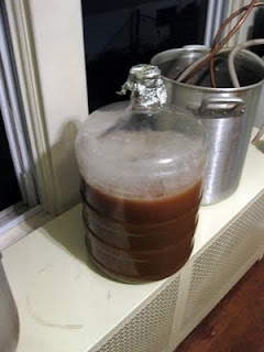 Aerated and pitched wort, ready for fermentation.