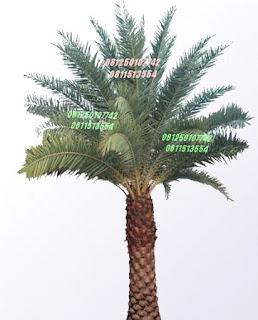 Palm Kurma | Jasa Tukang Taman Surabaya