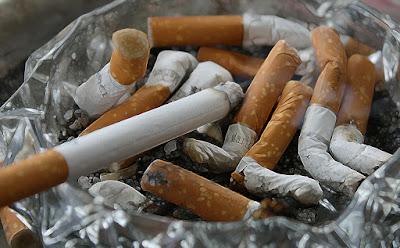 Hadits Palsu Tentang Tembakau Berasal Dari Kencing Iblis