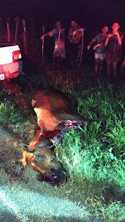 Acidente na PB 393 deixa duas jovens de São João do Rio do Peixe feridas.
