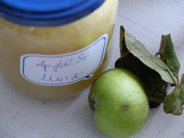 Äpfel einkochen Apfel ernte Kompott