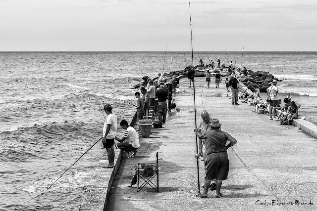 Pescadores deportivos en espigón sobre el mar.Blanco y Negro
