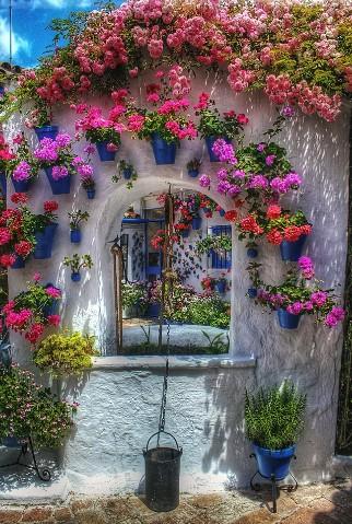Garden, Gardening, Plants, Planter, Nature, Garden Planter, DIY, creative garden, succulent, succulents, cactus, cacti