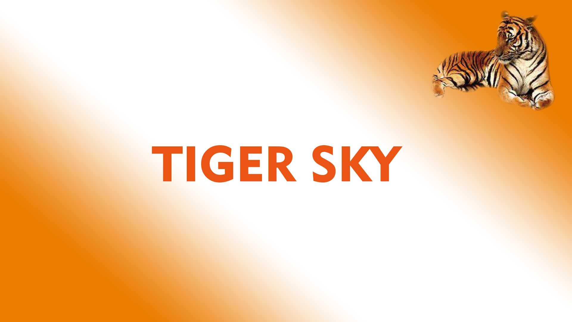 Software Tiger Sky CS8001 New Update Firmware Receiver