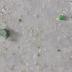 Nieuwe regering gaat voor verbod op microplastics