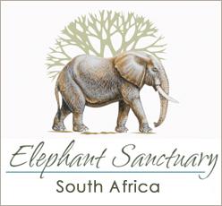 Elephant Sanctuary, The Crags em Plettenberg Bay