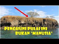 4 Pulau di Indonesia Ini Penghuninya Bukan Manusia