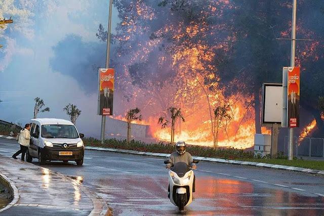 Akibat Kebakaran yang Melanda Israel, Timbul Bau Busuk