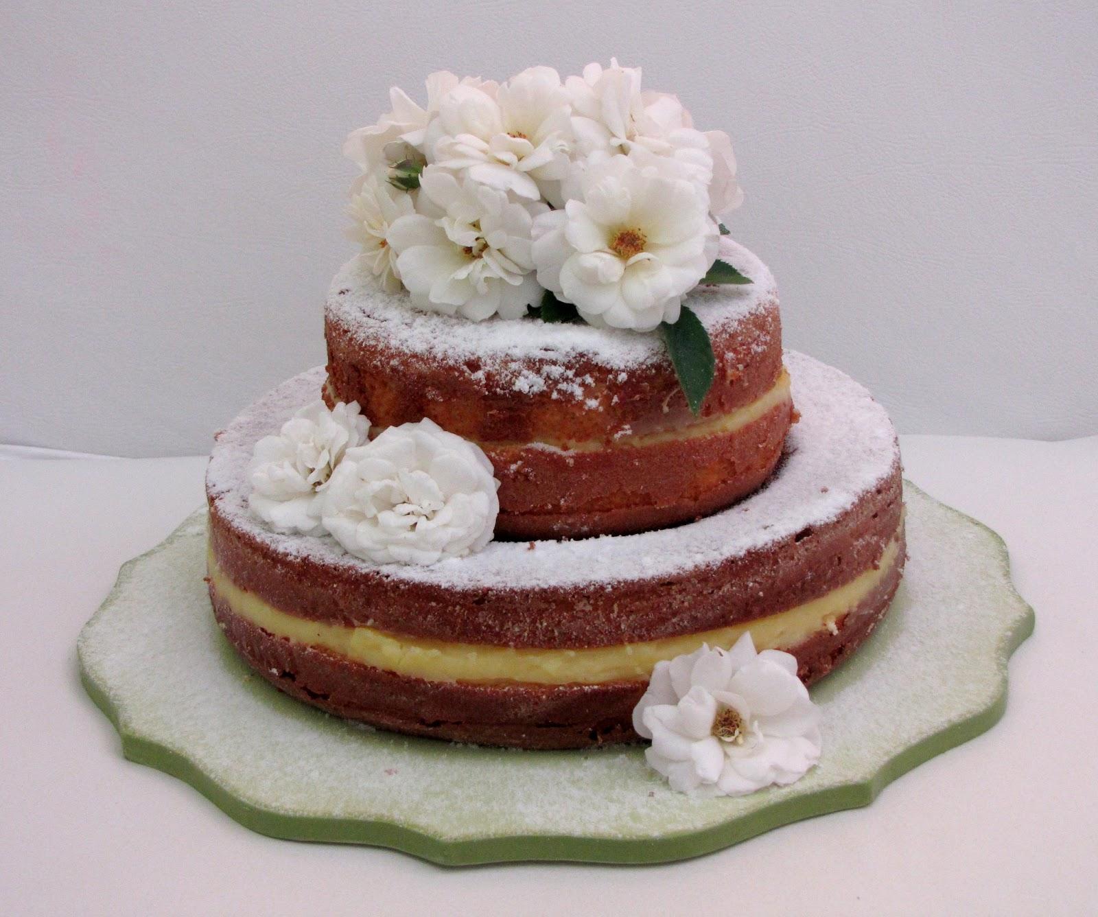 Dog Birthday Cake Savannah Ga