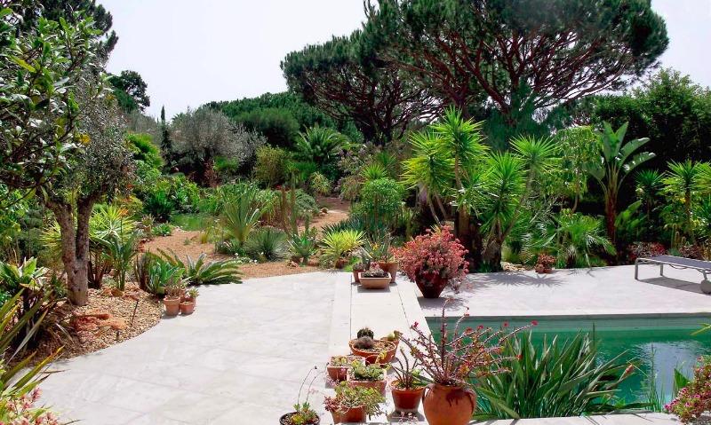 El jard n de suculentas de margaret jackson en el algarve - El jardin de lola ...