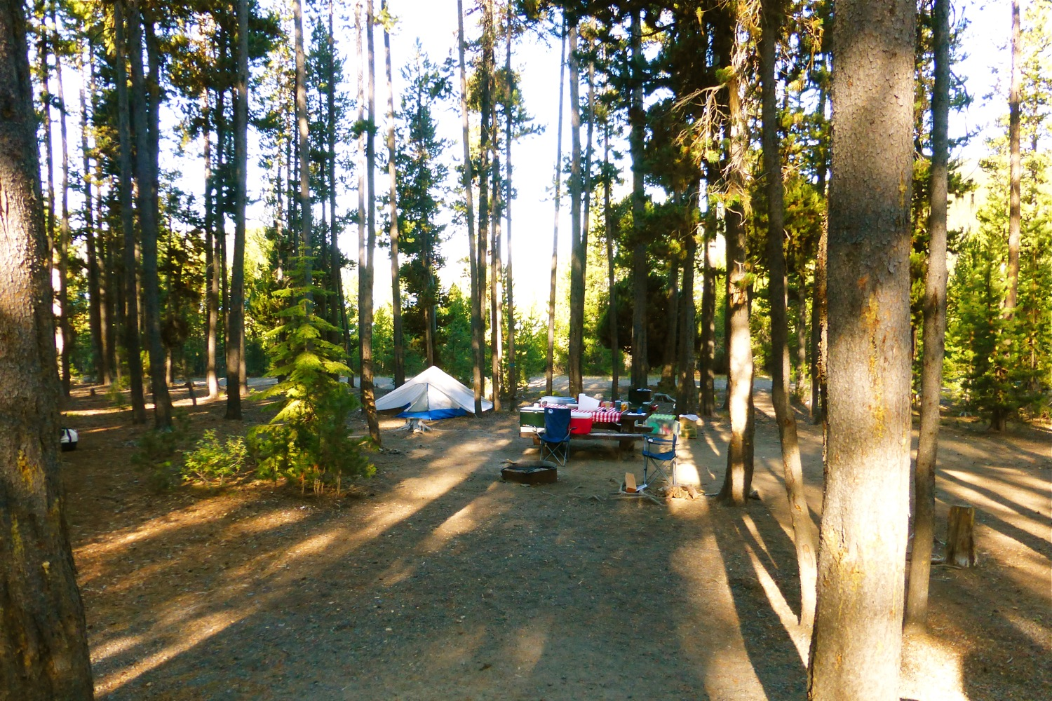 Cinder Hill Campground Newberry National Volcanic Monument, Cinder Hill Campground, Anderson campsite Newberry National Volcanic Monument