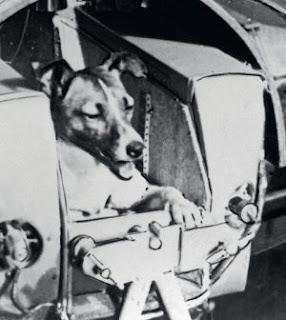 Uzay Köpeği Layka (Laika)