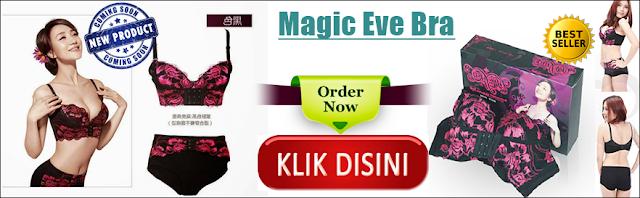 Paket Magic Eve Bra Pengencang Payudara