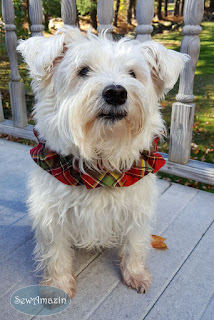 Christmas Peach Holiday Plaid Dog Scrunchie Neck Ruffle